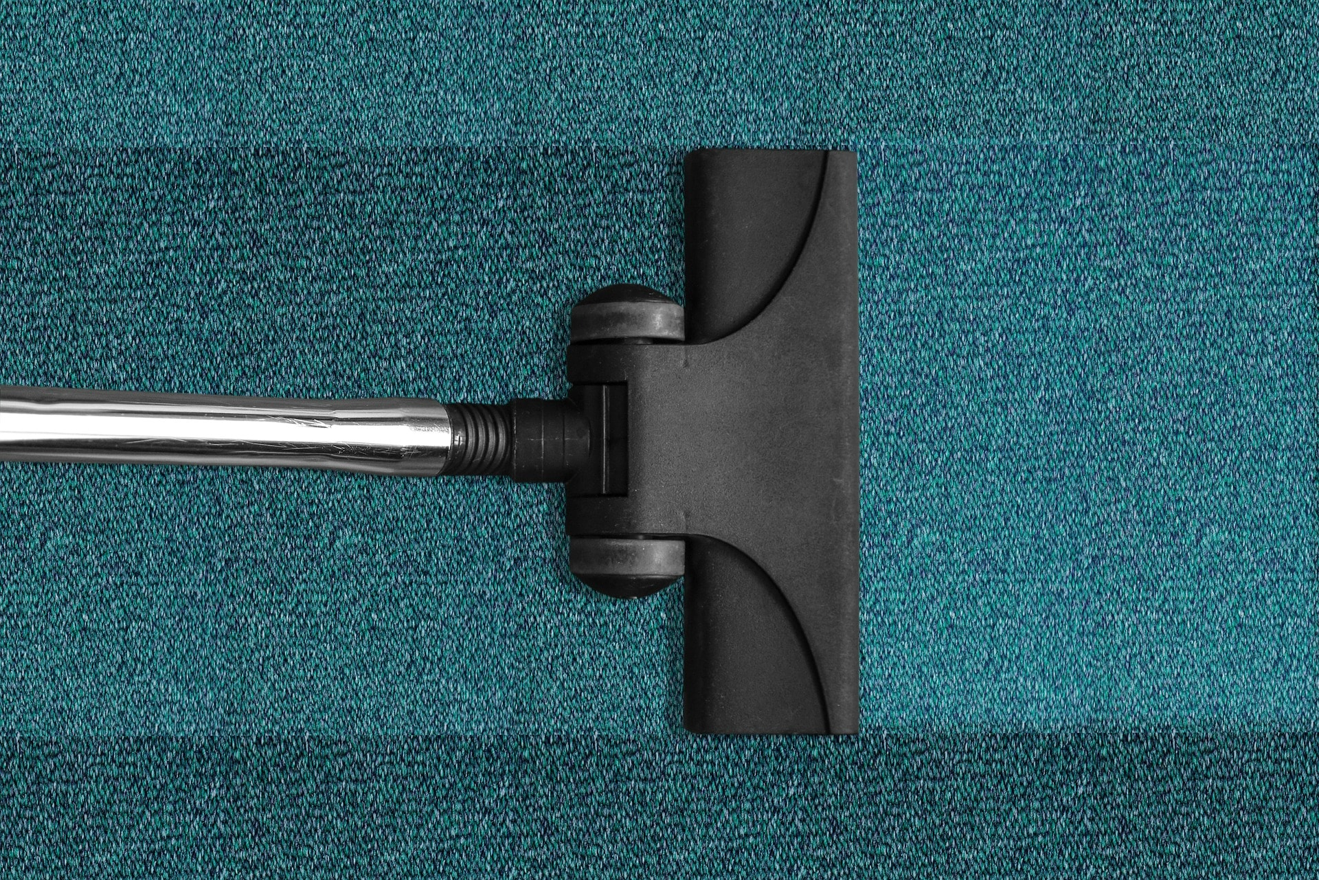 choose a professional carpet cleaning