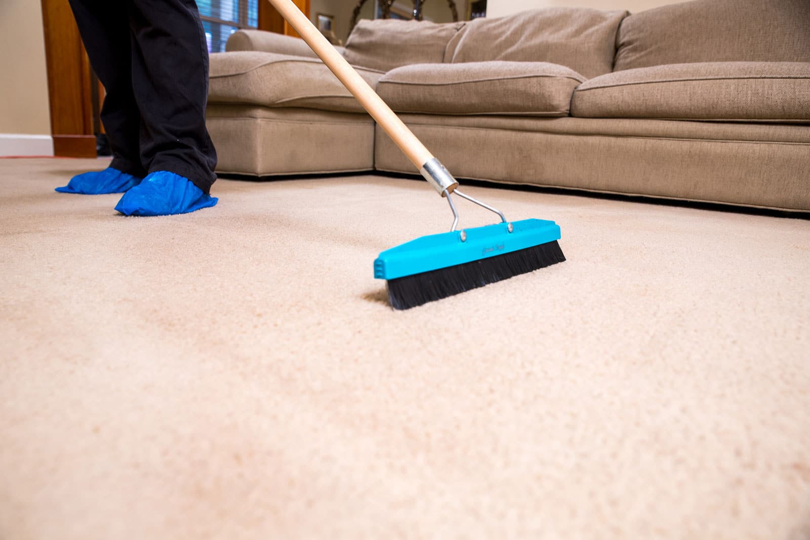 gainesville carpet cleaning company