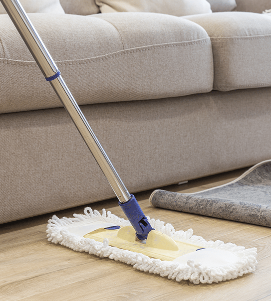 upholstery cleaning company